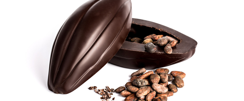 Handcrafted chocolate cocoa pods